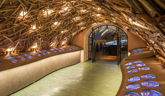 Visite des caves du Louvre