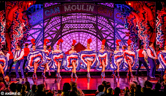 Spectacle Moulin Rouge+ 1/2 btle de Champagne