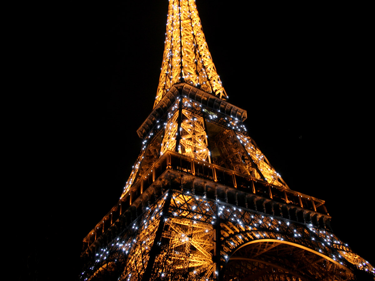 Eiffel Tower Dinner