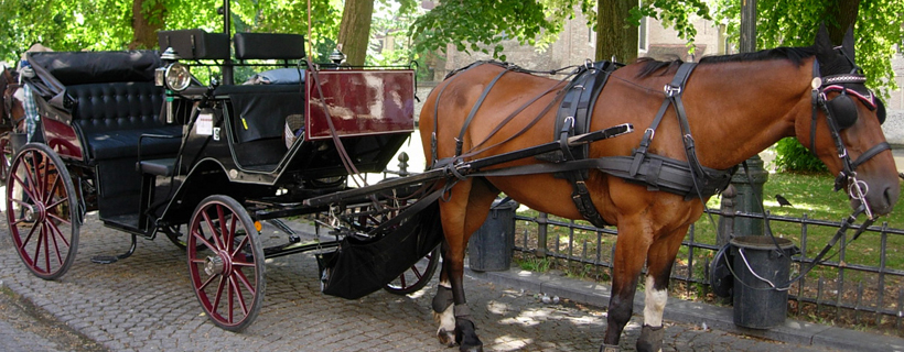 Horse carriage tour in Bruges